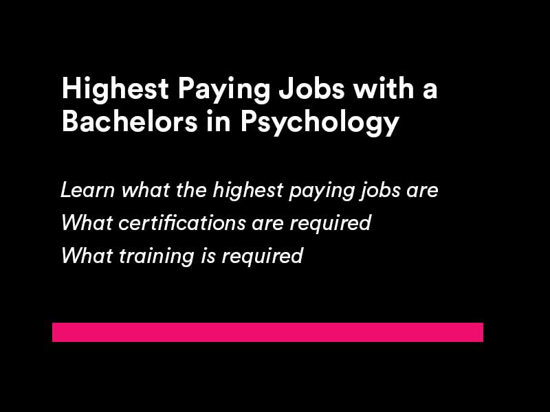 Highest Paying Jobs with a Bachelors in Psychology